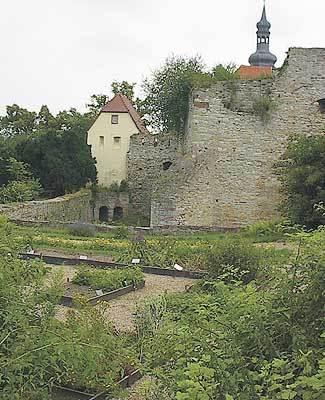 Kräuter- und Lustgarten der Burg