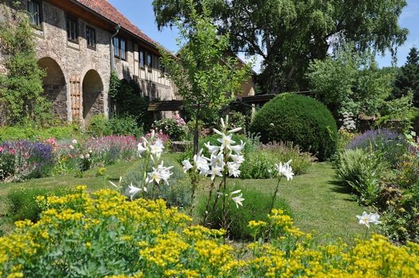 Kräutergarten auf der Südseite